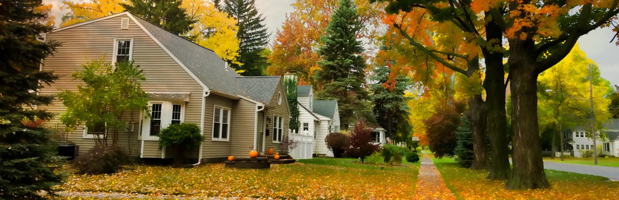 Fall2015housebanner-2.jpg