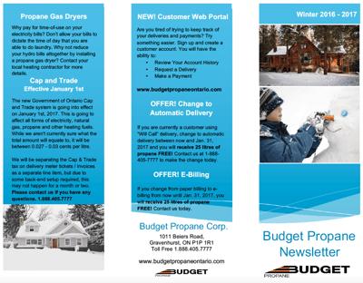 Budget Propane Winter Newsletter Sample