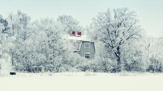 Protect Your Home or Cottage from Cold Weather Damage Like Burst Pipes