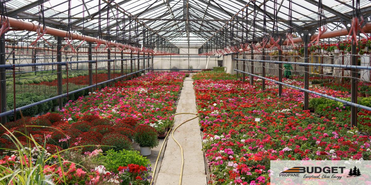 Propane Greenhouses